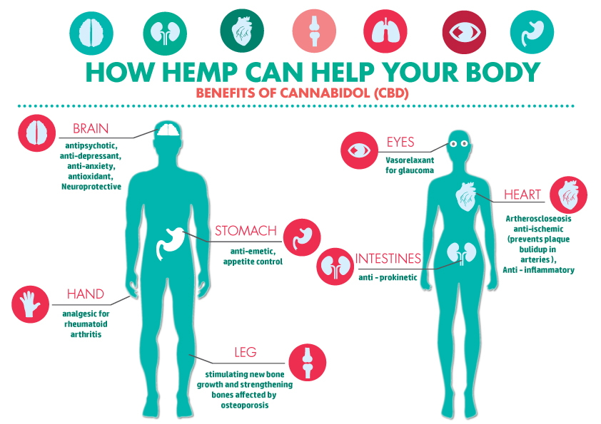 CBD_health_infographic